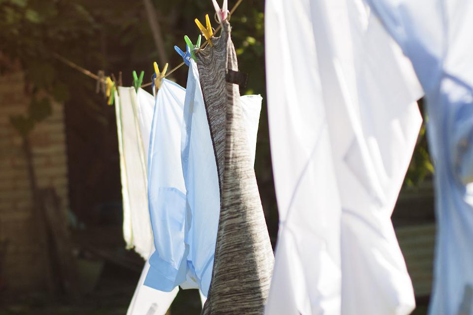 Hygienespüler für reine Wäsche